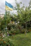 爱国心,乌克兰旗子 库存图片