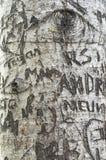 爱在恋人` s车道,绿色山墙遗产地方的树雕刻的消息 库存图片