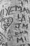 爱在恋人` s车道,绿色山墙遗产地方的树雕刻的消息 库存照片