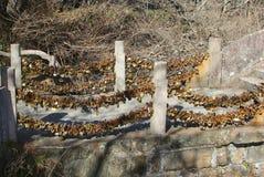 爱在黄色山的锁桥梁,中国 库存照片