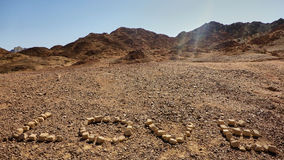 爱在Arava沙漠 库存图片