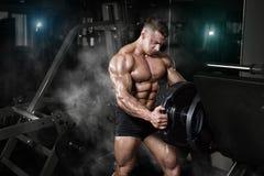 爱好健美者肌肉与重量的运动员训练在健身房 免版税图库摄影