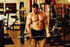 爱好健美者训练健身房 库存照片