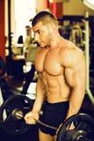 爱好健美者训练健身房 免版税库存图片