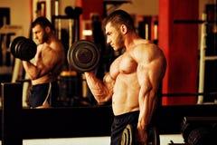爱好健美者训练健身房 库存图片