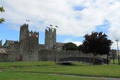 爱尔兰中世纪镇墙壁 免版税库存照片