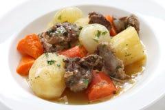 爱尔兰人的菜肴 免版税库存照片