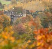 爱尔兰城堡amidsts森林地在秋天 免版税库存照片
