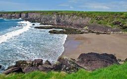 爱尔兰横向农村本质的摄影 库存图片