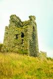 爱尔兰横向 城堡,科克郡,爱尔兰欧洲废墟  免版税库存图片