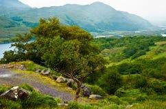 爱尔兰横向Killarney国家公园 图库摄影