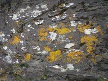 爱尔兰沿海岩石 库存照片