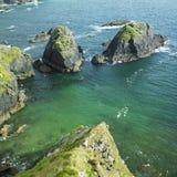爱尔兰海景 免版税库存图片