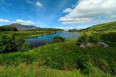 爱尔兰的美好的本质和风景 库存照片