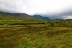爱尔兰的美好的本质和风景 免版税库存照片