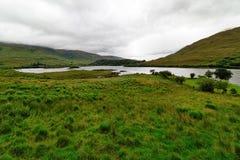 爱尔兰的美好的本质和风景 免版税库存图片