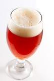 爱尔兰红色淡啤酒 库存照片