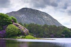 爱尔兰风景湖的山 免版税库存图片
