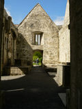 爱尔兰 基拉尼国家公园 库存图片