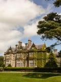 爱尔兰 基拉尼国家公园 免版税库存图片