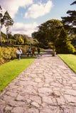 爱尔兰 基拉尼国家公园 图库摄影