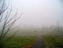 爱尔兰 季节性风景 免版税库存照片