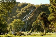 爱尔兰powerscourt瀑布 库存照片