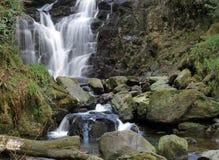 爱尔兰torc瀑布 免版税库存照片