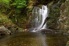爱尔兰torc瀑布 免版税库存图片