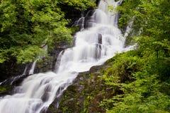 爱尔兰torc瀑布 库存图片