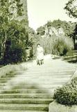 爱德乐南部的文化公园楼梯1971年10月 免版税图库摄影