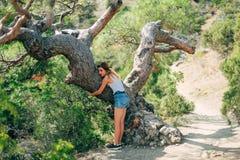爱恋拥抱树的女孩户外在干净的公园在夏天 免版税库存照片