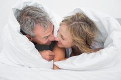 爱恋的中部在鸭绒垫子下的年迈的夫妇 库存图片