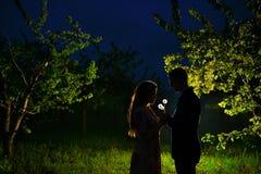 爱恋的夫妇在开花的庭院里 库存图片