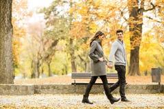 爱恋的夫妇在秋天公园 免版税库存照片