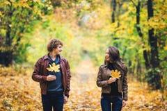 爱恋的愉快的夫妇在秋天在拿着秋天槭树的公园在手离开 图库摄影
