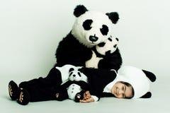 爱恋的熊猫小孩 图库摄影