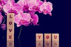 爱您与桃红色兰花植物兰花的消息 免版税库存照片