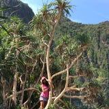 爱护树木!!!! 免版税图库摄影