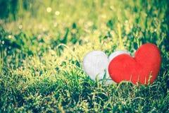 爱概念为华伦泰` s天 爱标志的o心脏形状 图库摄影