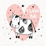爱母牛 库存照片