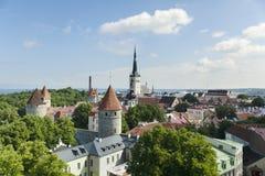 爱沙尼亚全景塔林视图 库存图片