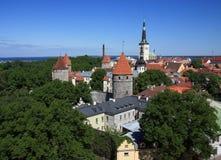 爱沙尼亚全景tallin视图 库存照片