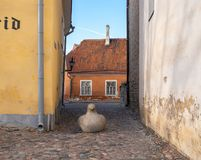 爱沙尼亚塔林座堂山,老镇大厦 免版税库存照片