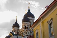爱沙尼亚塔林 亚历山大・涅夫斯基大教堂看法  著名正统大教堂是塔林的最大和最盛大的正统圆屋顶 图库摄影