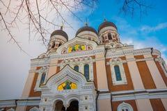 爱沙尼亚塔林 亚历山大・涅夫斯基大教堂看法  著名正统大教堂是塔林的最大和最盛大的正统圆屋顶 免版税图库摄影