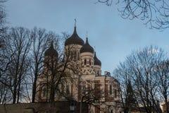 爱沙尼亚塔林 亚历山大・涅夫斯基大教堂看法  著名正统大教堂是塔林的最大和最盛大的正统圆屋顶 免版税库存照片