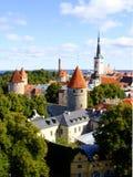 爱沙尼亚塔林 免版税库存照片