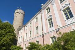 爱沙尼亚塔林 库存图片