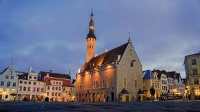 爱沙尼亚大厅正方形塔林城镇 库存图片